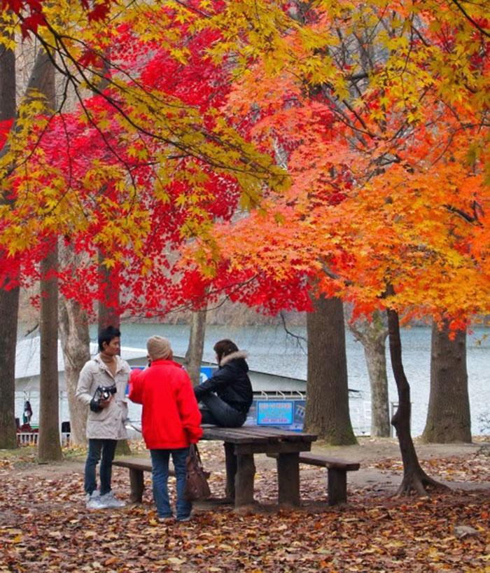 Mùa thu lá bay - Chiêm ngưỡng vẻ đẹp mùa thu Hà Quốc