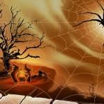 Buồn trông con nhện giăng tơ
